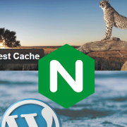 Wordpress Nginx WP Fastest Cache Configuration