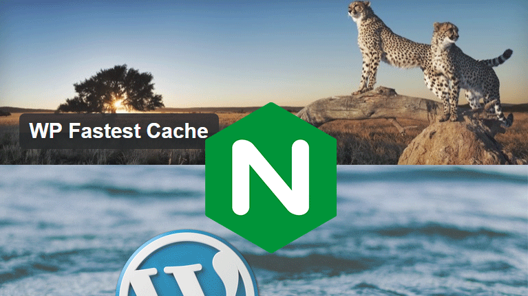 Wordpress Nginx WP Fastest Cache Configuration