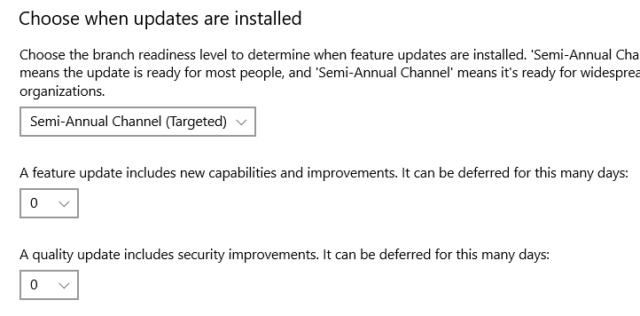 disable windows 10 update temporarily